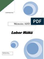 dossier AEO FINAL[1]