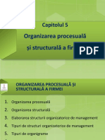 215351274 Management FSEGA Cluj Napoca