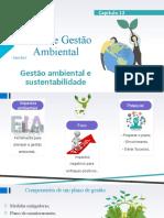 Slide Capitulo 13- Gestão Ambiental (1)