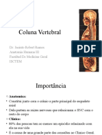 Coluna Vertebral 2