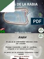 Virus de la Rabia y Rhinosporidiosis