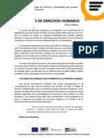 Los DDHH Pedro Nikken