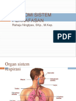 anatomifisiologisistempernafasan-tm1-121218185223-phpapp02