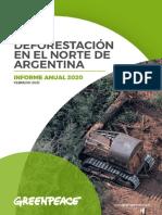 Deforestación en El Norte de Argentina - Informe Anual 2020