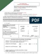Correction Fiche d Activites Meiose Et Brassages Genetiques