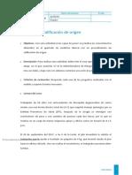 3. CALIFICACION DE ORIGEN