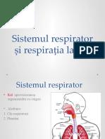 Sistemul_Respirator