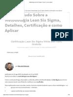 Metodologia Lean Six Sigma_ O que é e como aplicar
