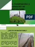 Modulo-Producción-en-Macrotuneles (1)