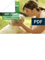 Chien - Guide