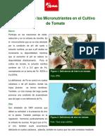 El papel de los micronutrientes en tomate