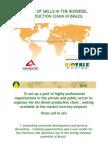 Biodiesel Partnership Proposal in Brazil PDF