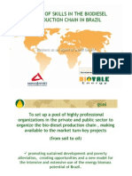 Biodiesel Partnership Proposal in Brazil PDF