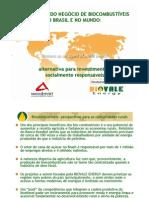 BIODIESEL PERSPECTIVAS NO BRASIL E NO MUNDO pdf