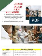 1 Generalidades de La Salud Bovina en Ecuador