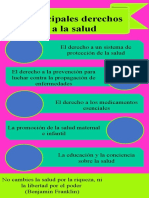 Principales Derechos a La Salud - Denis
