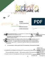 Apuntes Embrio