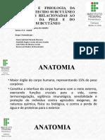 Anatomia e fisiologia da pele e do tecido subcutâneo IFPE Abreu e lima