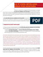 normativacopasevillacxm2021 (2)