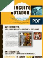 Taller enfermedad profesiona_manguito rotador (1)