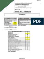 MEMORIA  DE LABORES PINARES 2019