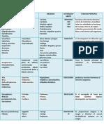 cuadrofisiologia