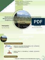 293160332 Proyecto Socioproductivo Marzola Ejemplo