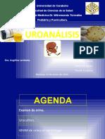 Uroanalisis