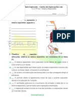 B.1.7 - Ficha de Trabalho - Sistema Respiratório (1)