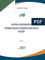 GuiaExecuçãoPDP2020 - Versão Final