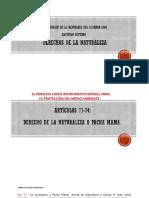 2 Constitución de la república del ecuador 2008 (2)