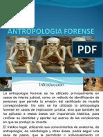 DIAPOSITIVA_ANTROPOLOGIA (1)