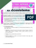 Ficha El Ecosistema Para Quinto de Primaria