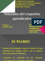 Musculos Del Apendicular
