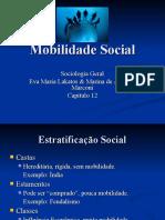 Mobilidade_Social