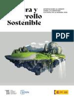 REDS Cultura y Desarrollo Sostenible 2020 (1)