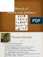 7. Horses and donkeys breeds and colours 2020 reduced