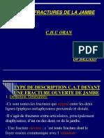 c2. Fractures de La Jambe