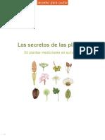 Los secretos de las plantas