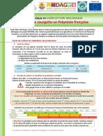FTC Courgette PF