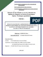 Essai d'analyse de l'empleur de l'impact des risques industriels du secteur petrolier sur la santé et l'environnement en Algerie