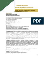 PROFESORES CASTELLO - VECCHIO - Lengua castellana