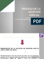 Proceso de La Adopcin Judicial Final