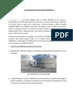 Patologías del Concreto en Estructuras Hidraulicas