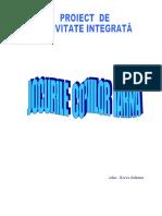 proiect_pentru_inspectie_specialaiuliana