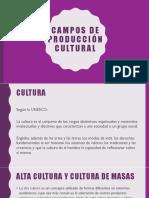 Campos de producción cultural
