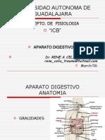ap-digestivo-i-12