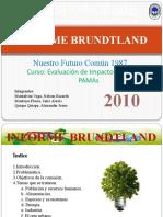 INFORME_BRUNDTLAND