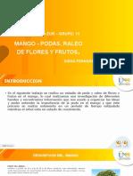 Anexo 1. Plantilla presentación UNAD-