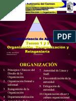Temas 1 2 Organizacion Reorg Reing
